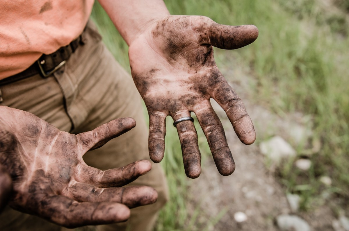 workhorse people love to get their hands dirty and work hard