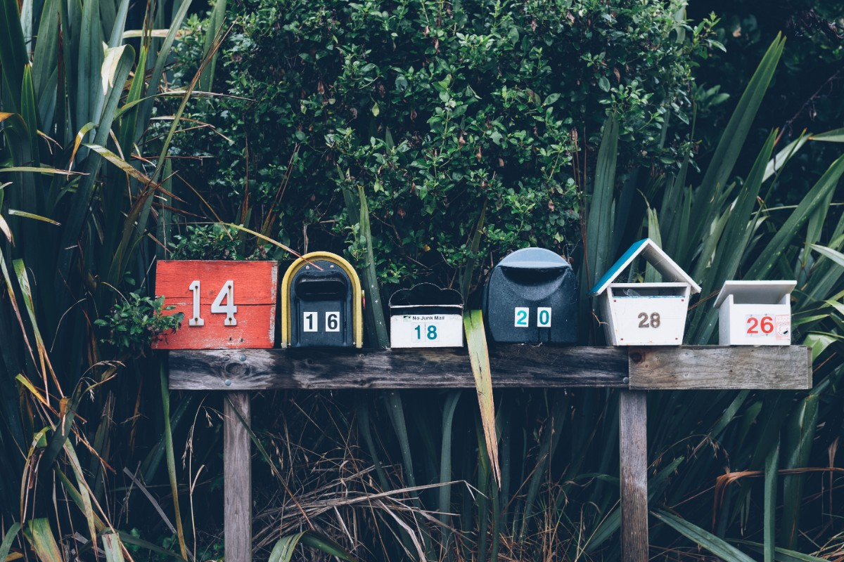 Mailboxes surrounded by plants image for Dandelion Branding Email Best Practices