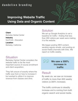 BHC - Case Study - Website Traffic.001